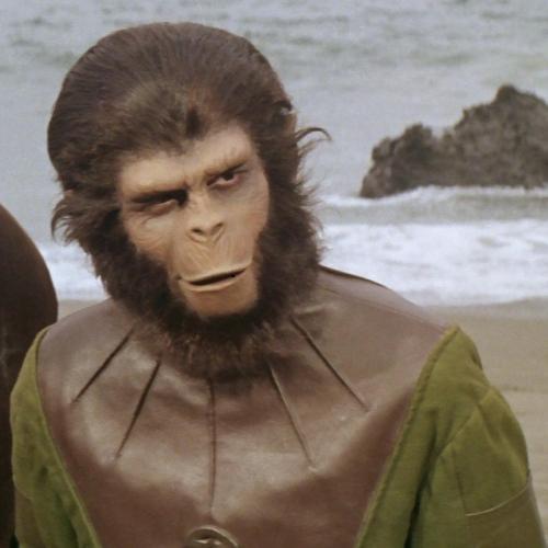 13.06.14_Luiz Bernardo Pericás_O sapo Gonzalo em Planet of the Apes