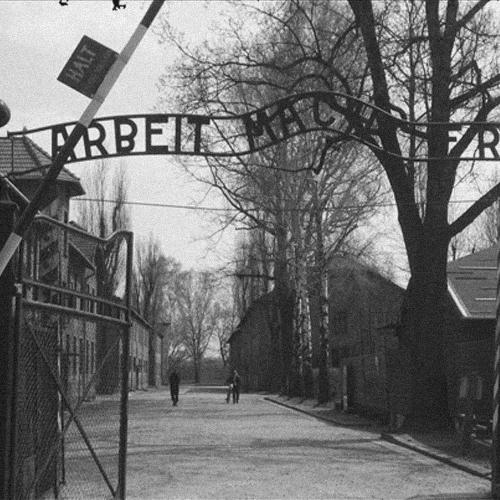 13.10.03_Flávio Aguiar_Auschwitz