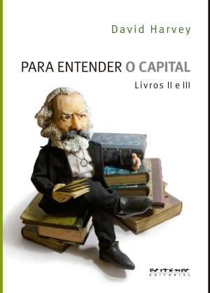 Para entender O Capital Livro 2 Capa.indd
